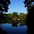池の西端にて