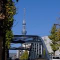Photos: 新扇橋越しに望む