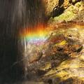 写真: 短い虹