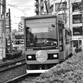 DSC_5530 路面電車