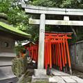 DSC_5610 根津神社にて 鳥居