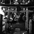 DSC_6979 岡上神社・・・1