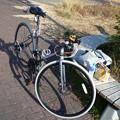 写真: P1050083 マクドから公園まで...。