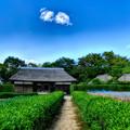 写真: 農村