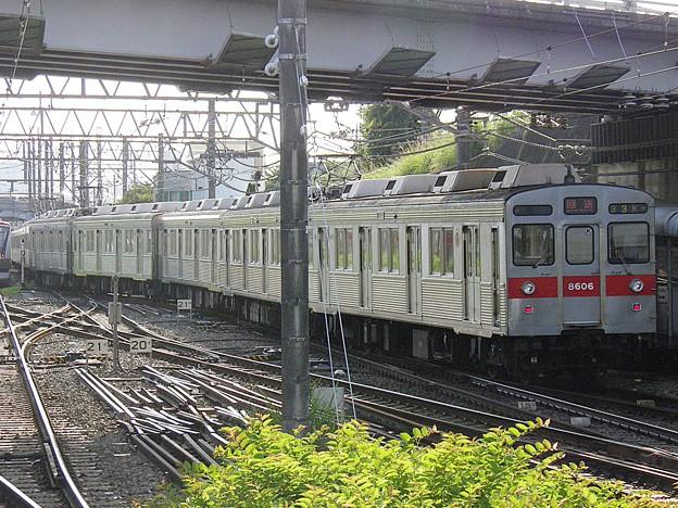 P6030054
