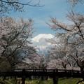 写真: 170425 06 忍野村から