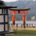 広島 厳島神社 151121 02
