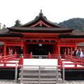 広島 厳島神社 151121 04