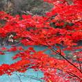 写真: 福島 五色沼 141027 02