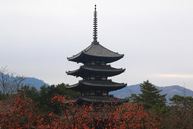 興福寺 171129 03