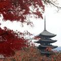 写真: 興福寺 171129 04