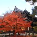 写真: 南禅寺 171201 06