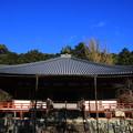 写真: 醍醐寺 171202 03