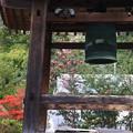写真: 常楽寺 171202 03