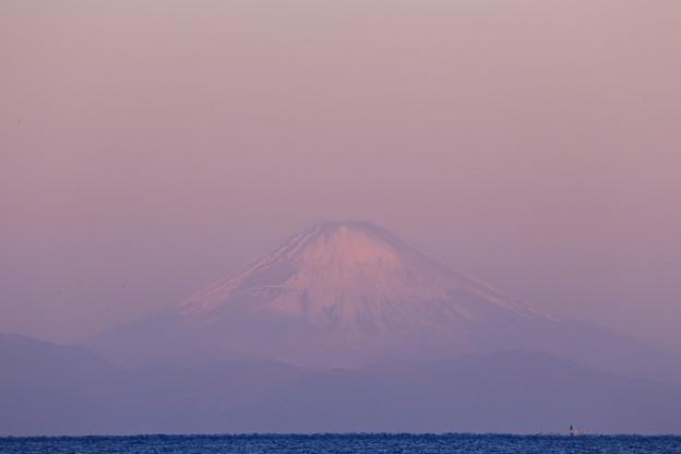 写真: 晦日の富士
