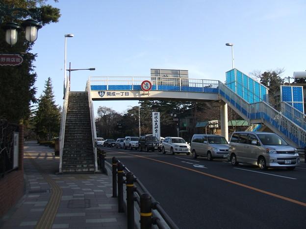 国道49号 - 開成山 - 5