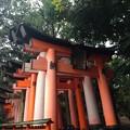 伏見稲荷4
