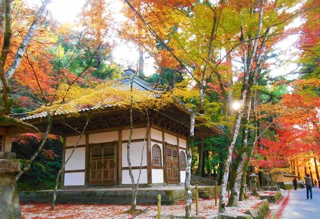 Photos: 輪蔵の秋