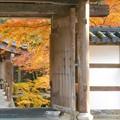 Photos: 備後路・山門の秋