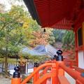 写真: 備後路 多宝塔・地蔵堂・開山堂の秋