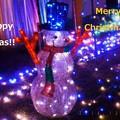 Photos: Happy Merry Christmas 2014 ♪