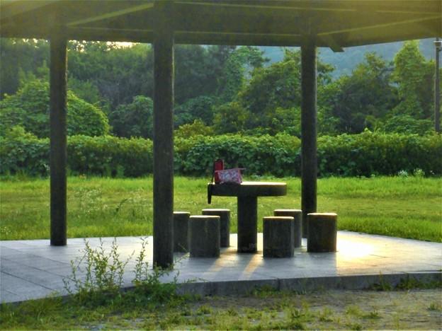 夏休み最後の日曜日@冒険の森