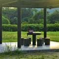 写真: 夏休み最後の日曜日@冒険の森