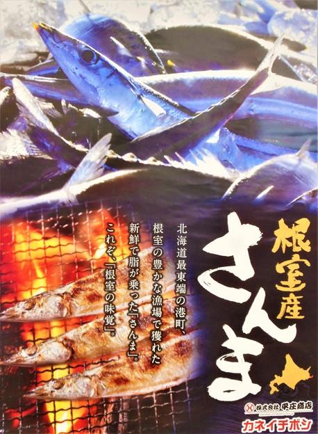 写真: 根室の味覚@根室のさんま(ポスター)