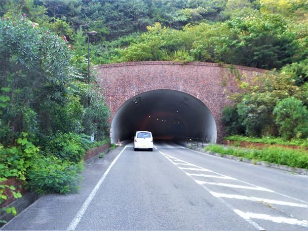 山の中のトンネルを抜けると@そこは水源池だった@久山田トンネル