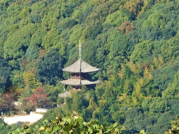 秋の西國寺三重塔@浄土寺山山頂からの眺望