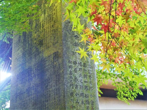 苔むす薬師堂再建碑と紅葉@浄土寺山