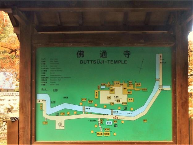 秋の佛通寺をご案内します。