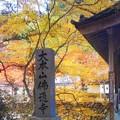 写真: 大本山佛通寺の秋
