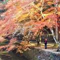 佛通寺川の秋@巨蟒橋(きょもうきょう)からの眺め