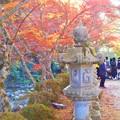 Photos: 佛通寺川の紅葉@総門前の秋