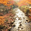写真: 佛通寺川のせせらぎ