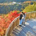 写真: 初冬の紅葉@瀬戸路の高見山展望台(標高283m)