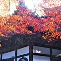 写真: 晩秋の地蔵堂@古刹・佛通寺