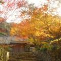 写真: 錦秋の永徳院@備後路・佛通寺