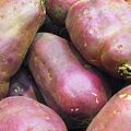 茨城県産、薩摩芋はいかが?