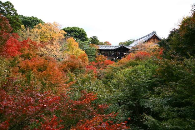 東福寺之美