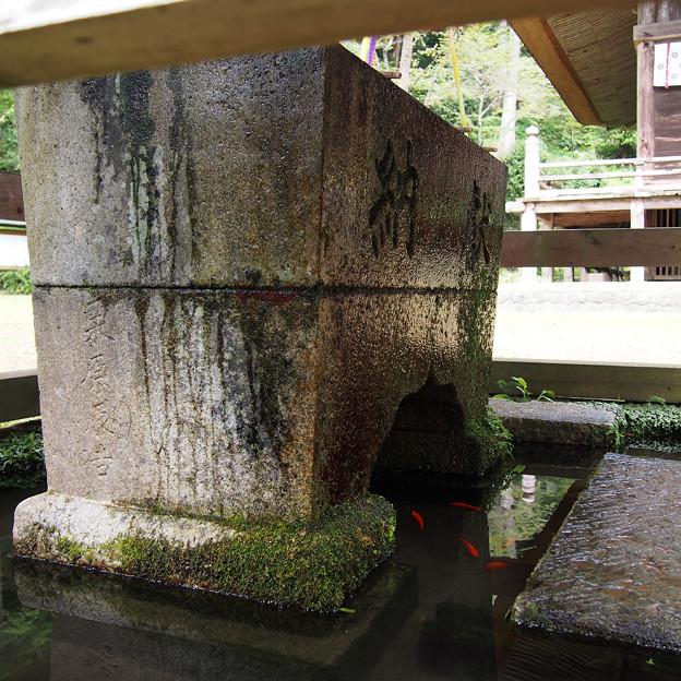 智満寺の手水場の金魚