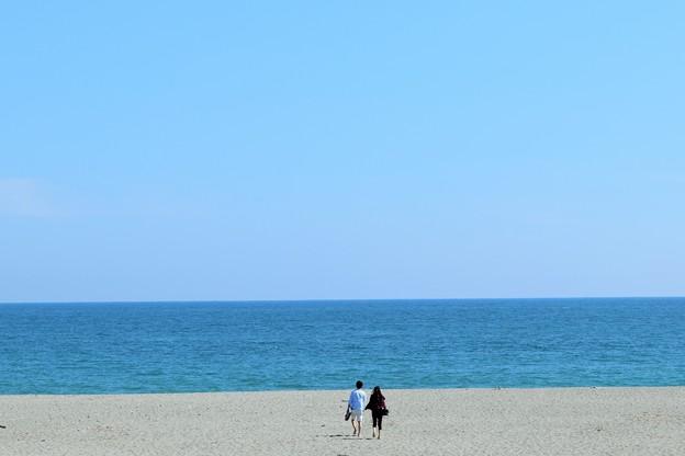 Photos: 海辺のone scene