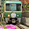 鎌倉行きの江ノ電