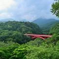 緑の国にかかる橋