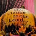 写真: かぼちゃ・・・・怖い