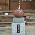 写真: 幸せのかぼちゃ
