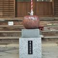 Photos: 幸せのかぼちゃ