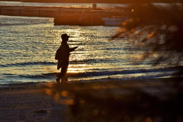 写真: オレンジに輝く海辺
