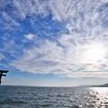 写真: 湖畔の鳥居